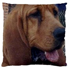 Bloodhound  Large Cushion Case (Two Sides)