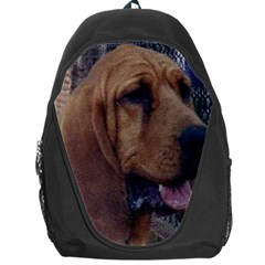 Bloodhound  Backpack Bag