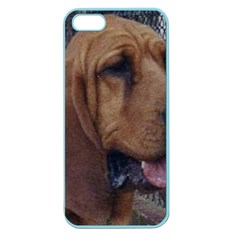 Bloodhound  Apple Seamless iPhone 5 Case (Color)