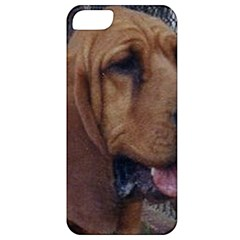 Bloodhound  Apple iPhone 5 Classic Hardshell Case