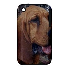 Bloodhound  iPhone 3S/3GS