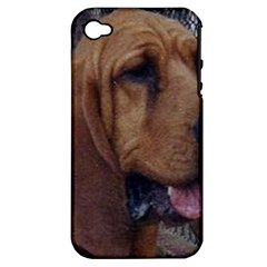 Bloodhound  Apple iPhone 4/4S Hardshell Case (PC+Silicone)