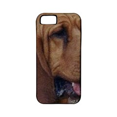 Bloodhound  Apple iPhone 5 Classic Hardshell Case (PC+Silicone)
