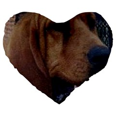 Bloodhound  Large 19  Premium Heart Shape Cushions