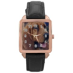 Bloodhound  Rose Gold Leather Watch