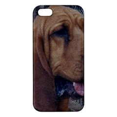 Bloodhound  Apple iPhone 5 Premium Hardshell Case