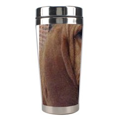 Bloodhound  Stainless Steel Travel Tumblers