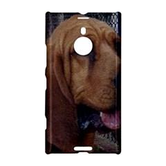 Bloodhound  Nokia Lumia 1520