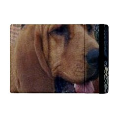 Bloodhound  iPad Mini 2 Flip Cases