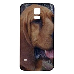 Bloodhound  Samsung Galaxy S5 Back Case (White)