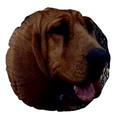 Bloodhound  Large 18  Premium Flano Round Cushions