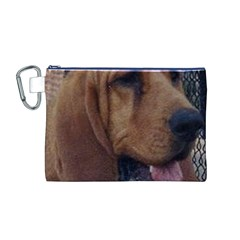 Bloodhound  Canvas Cosmetic Bag (M)