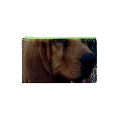 Bloodhound  Cosmetic Bag (XS)