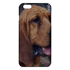 Bloodhound  iPhone 6 Plus/6S Plus TPU Case