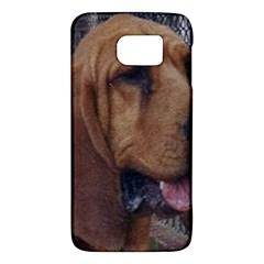 Bloodhound  Galaxy S6