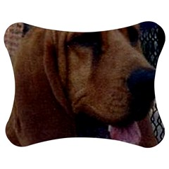 Bloodhound  Jigsaw Puzzle Photo Stand (Bow)