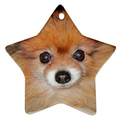 Pomeranian Ornament (Star)