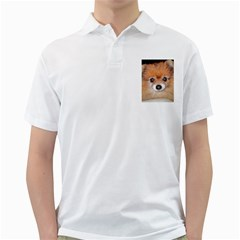 Pomeranian Golf Shirts