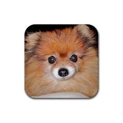 Pomeranian Rubber Coaster (Square)