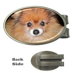 Pomeranian Money Clips (Oval)
