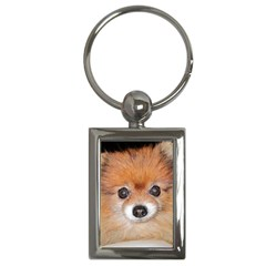 Pomeranian Key Chains (Rectangle)