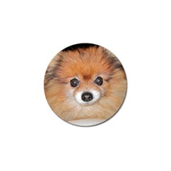 Pomeranian Golf Ball Marker (4 pack)