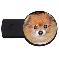 Pomeranian USB Flash Drive Round (1 GB)