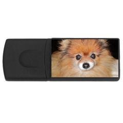 Pomeranian USB Flash Drive Rectangular (4 GB)