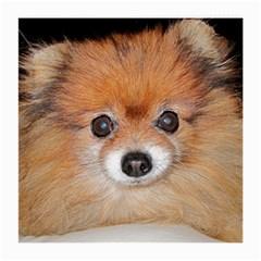 Pomeranian Medium Glasses Cloth