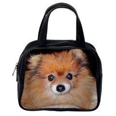 Pomeranian Classic Handbags (One Side)