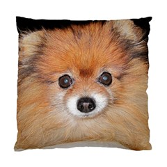 Pomeranian Standard Cushion Case (One Side)