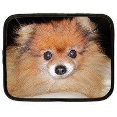 Pomeranian Netbook Case (XL)