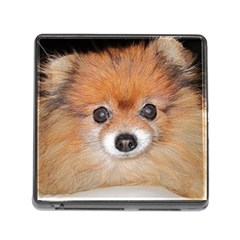 Pomeranian Memory Card Reader (Square)