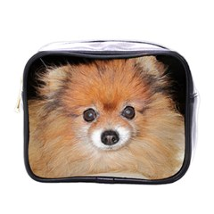 Pomeranian Mini Toiletries Bags