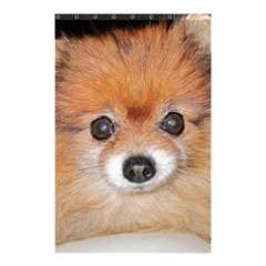 Pomeranian Shower Curtain 48  x 72  (Small)