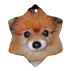 Pomeranian Snowflake Ornament (2-Side)