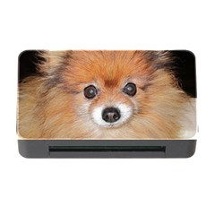 Pomeranian Memory Card Reader with CF