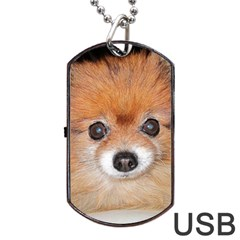 Pomeranian Dog Tag USB Flash (One Side)
