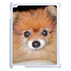 Pomeranian Apple iPad 2 Case (White)