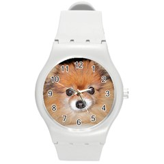 Pomeranian Round Plastic Sport Watch (M)