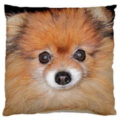 Pomeranian Large Cushion Case (Two Sides)