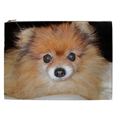 Pomeranian Cosmetic Bag (XXL)