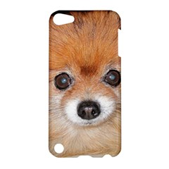 Pomeranian Apple iPod Touch 5 Hardshell Case