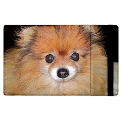 Pomeranian Apple iPad 3/4 Flip Case