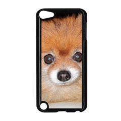 Pomeranian Apple iPod Touch 5 Case (Black)