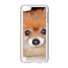 Pomeranian Apple iPod Touch 5 Case (White)
