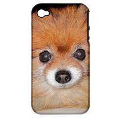 Pomeranian Apple iPhone 4/4S Hardshell Case (PC+Silicone)