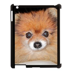 Pomeranian Apple iPad 3/4 Case (Black)
