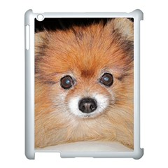 Pomeranian Apple iPad 3/4 Case (White)