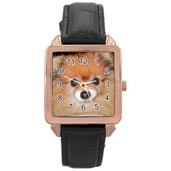 Pomeranian Rose Gold Leather Watch